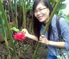 Mung Nguyen Thi