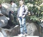 Hoàng Anh