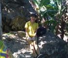 Vuong Ho