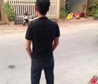 Phan Phan