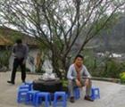 Dinh Xuan Pham