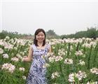 phuongtroihong83