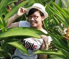 Bao Binh Hoang