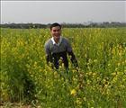 Nguyen Vu LOI