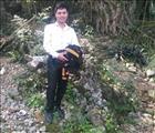 Nguyễn Quân